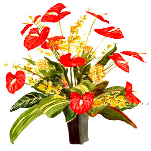 Christmas Flowers to Hyderabad