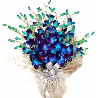 Send Flowers To Hyderabad Orchids Flowers To Hyderabad