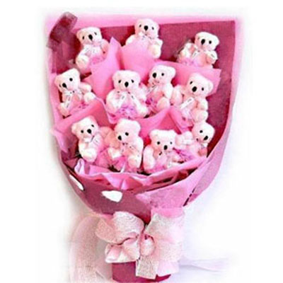 Send Softtoys and Flowers to Hyderabad